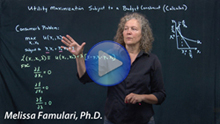 Screen grab of Famulari on economics video handbook